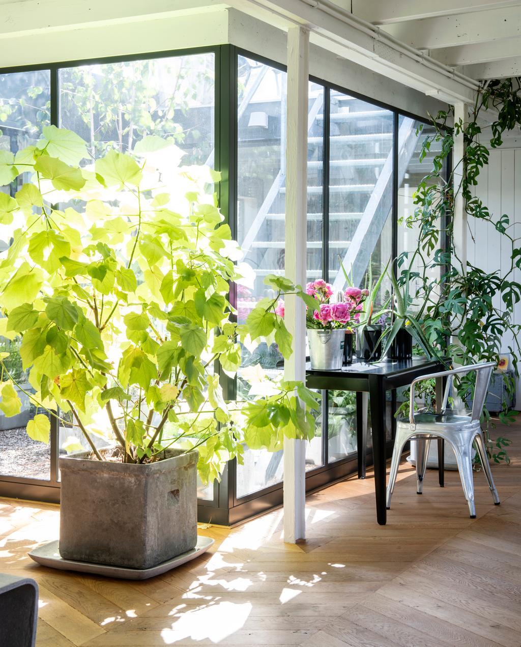 vtwonen binnenkijken special 2019 | keuken uitzicht naar de binnentuin