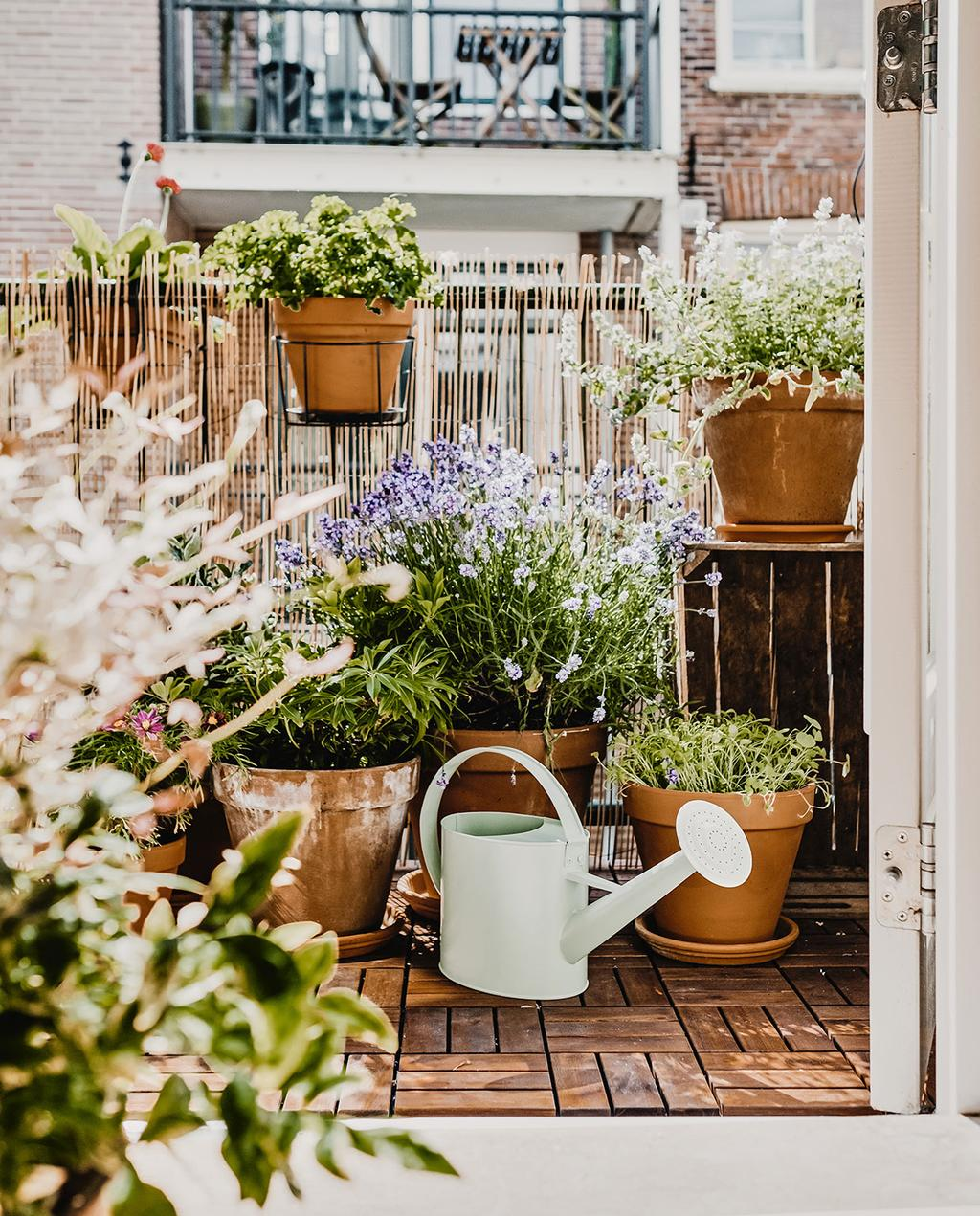 vtwonen 02-2021 | balkon met veel planten