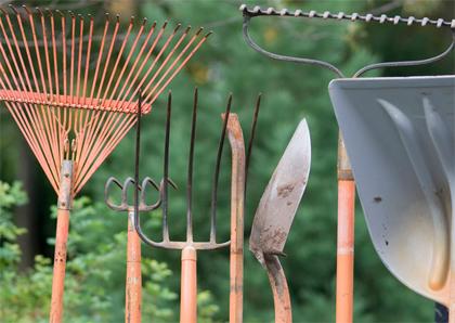 ></a></p> <p>Als je een tuin gaat ontwerpen is het handig om een stappenplan te volgen. Eerst ga je kijken hoe de tuin er nu uitziet en wat je mooi vindt, vervolgens ga je een ontwerp bedenken en schetsen en uiteindelijk komt jouw tuinontwerp tot leven.</p> <p>De online cursus 'Tuin ontwerpen' van Libelle Academy bevat al deze stappen. Meer informatie vind je op de website van <a title=