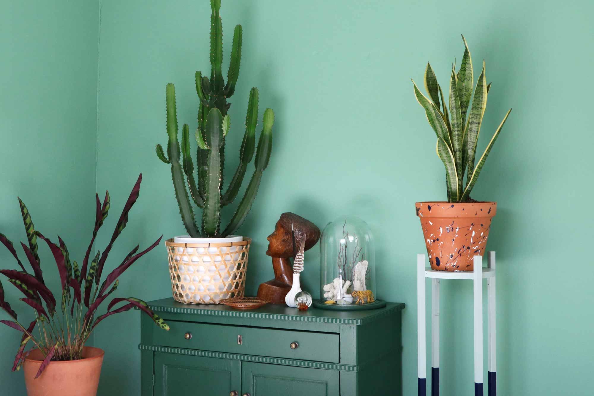 plantenstandaard diy plant groen