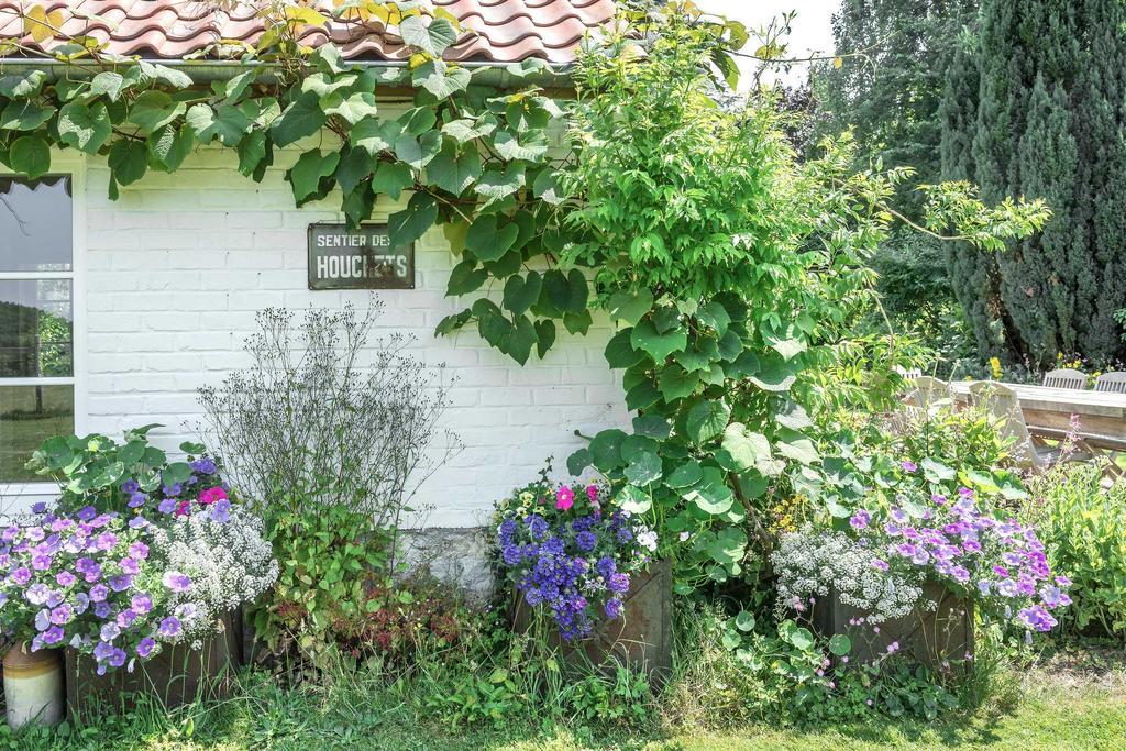 hoeve tuin bloemen