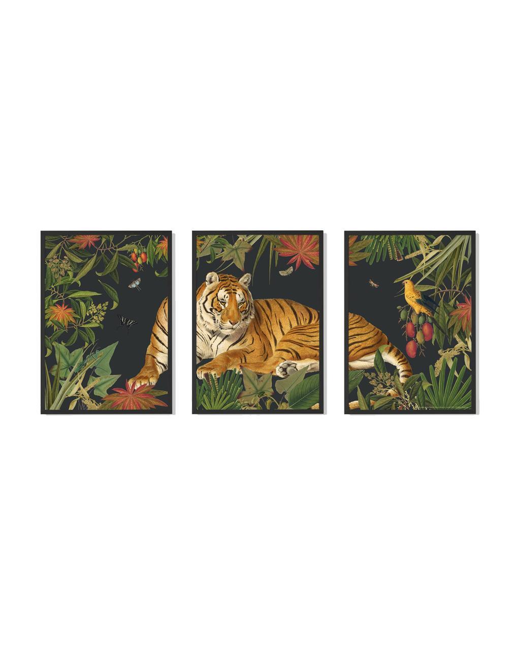 vtwonen juli 2021   set van tijger