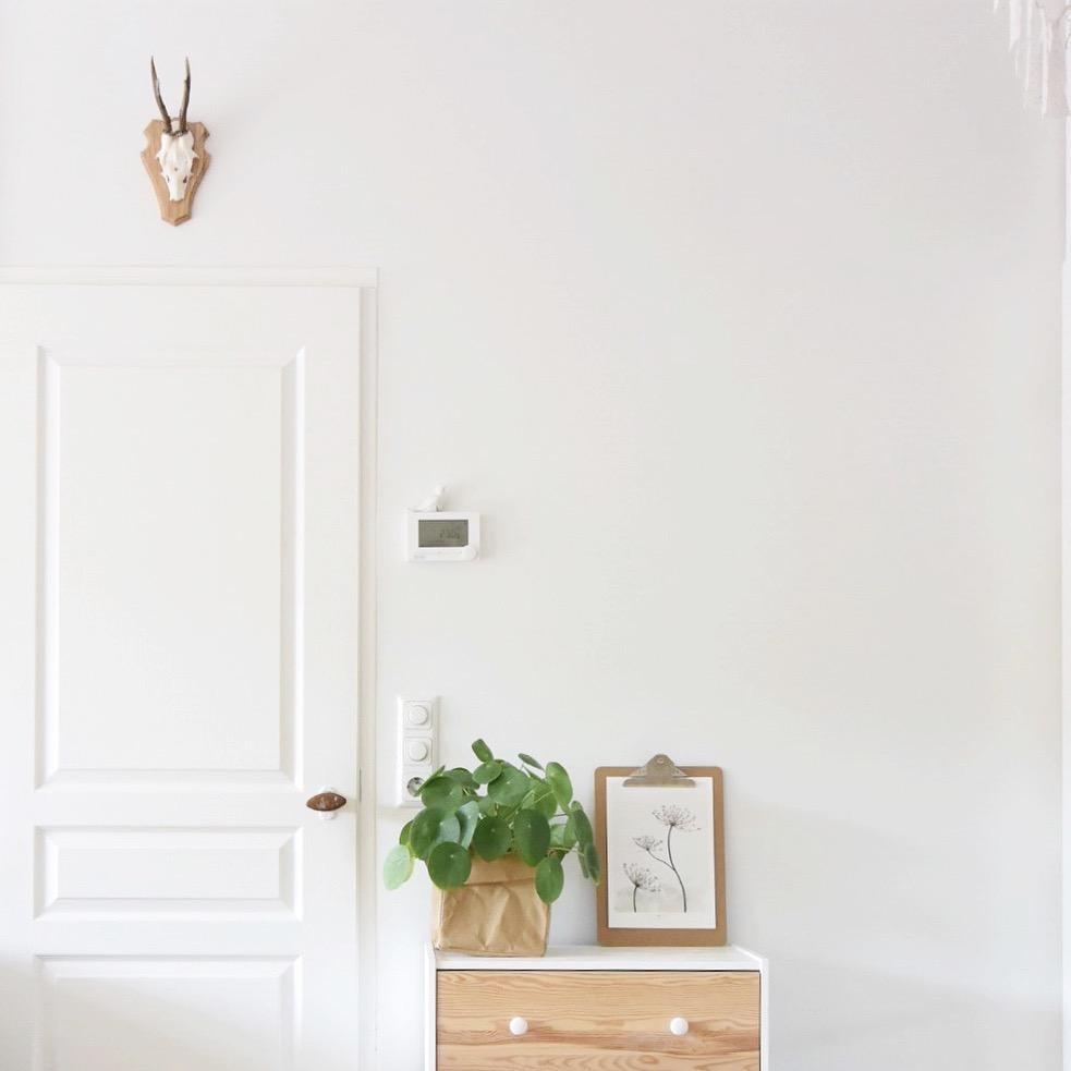Woonkamer witte deur houten kastje met plant Seline Steba