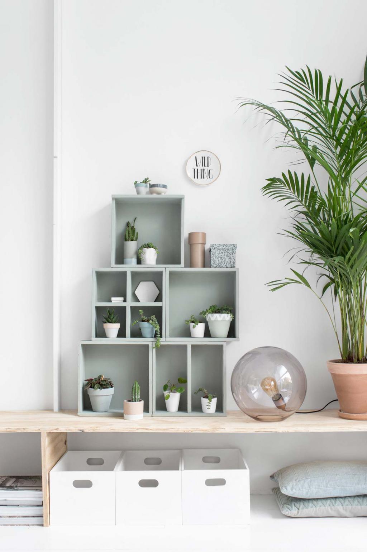 Groen plantenkastje met plantjes, een spiegel en wat extra accessoires