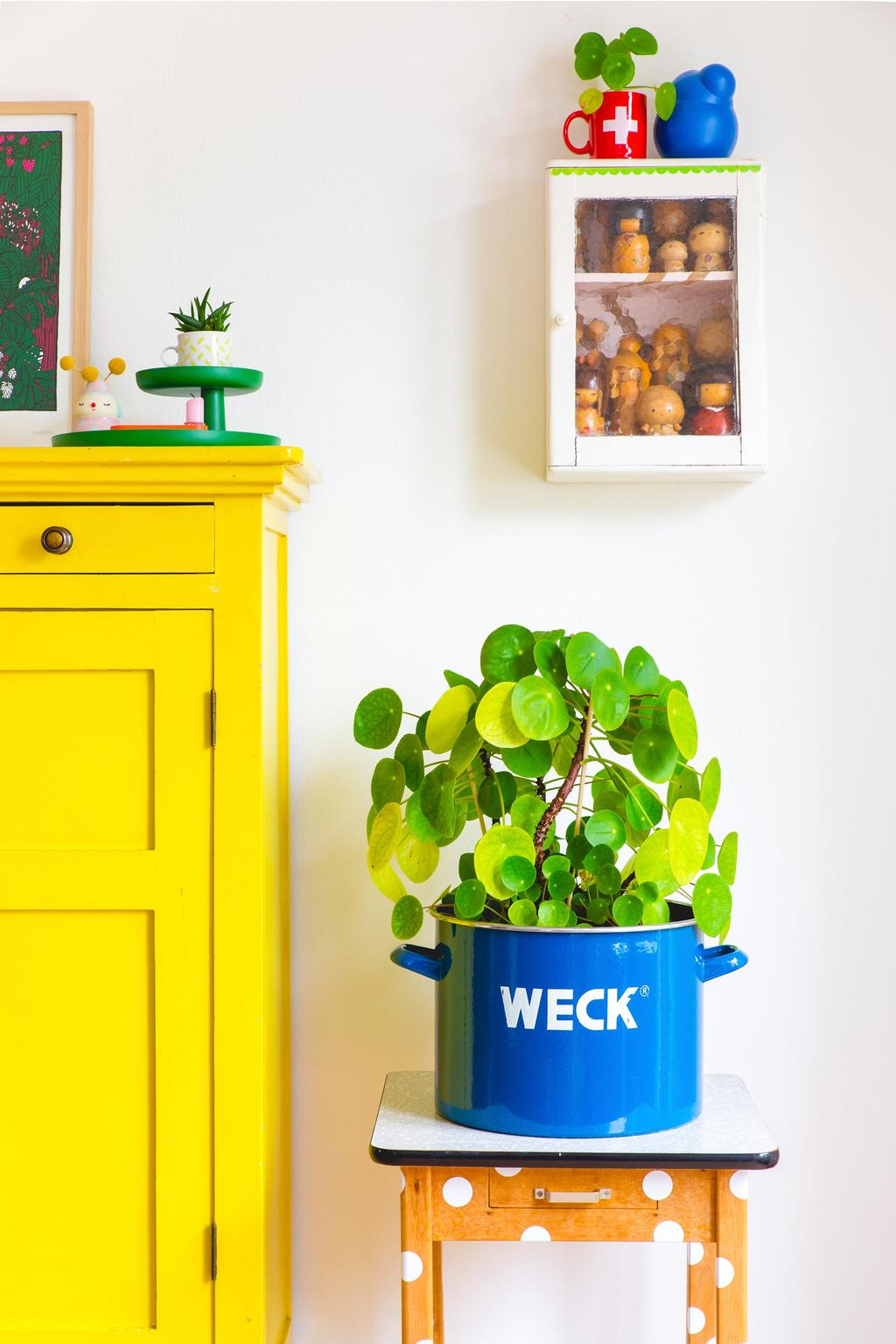 Stippentafel met plant naast een gele kast