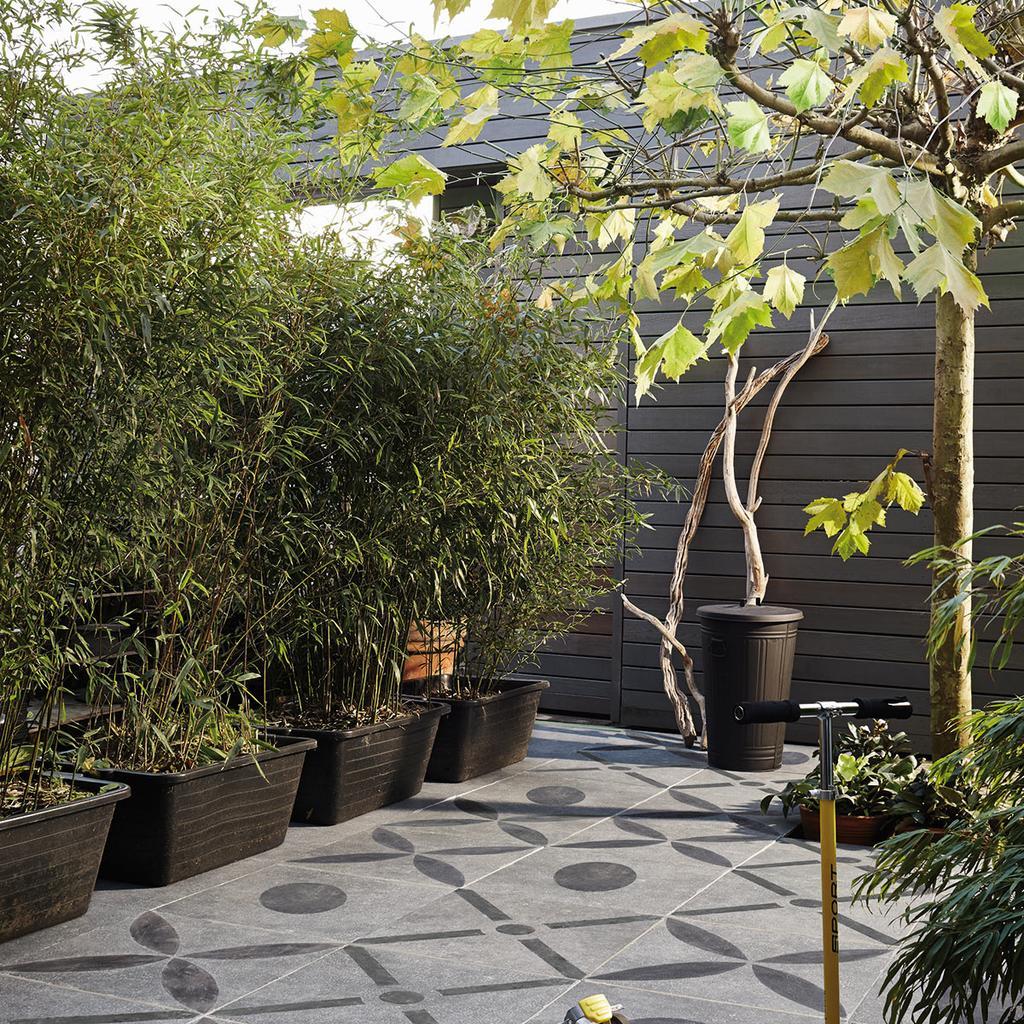 bamboe-planten-tuin-tuinplant-erfafscheiding-schutting-natuurlijkeschutting-vtwonen