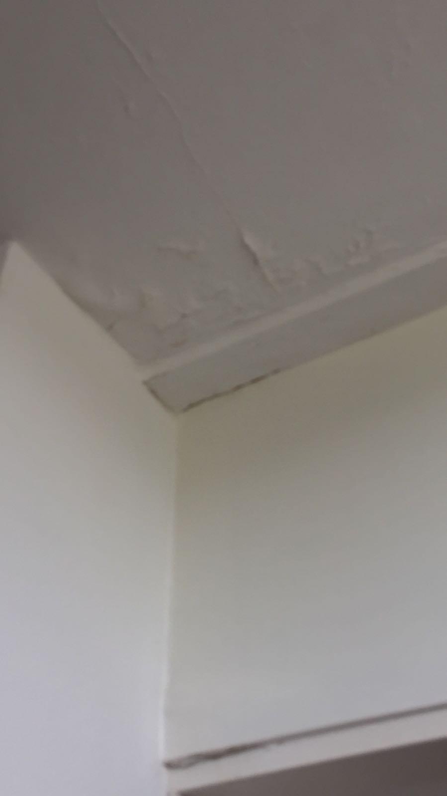 ook-het-plafond-in-mijn-keuken-geheel-beschadigd-en-na-5-maanden-nog-steeds-niet-verholpen-kan-dus-wel-wat-positiviteit-kwijt-in-mijn-keuken-doormiddel-van-een-leuk-servies