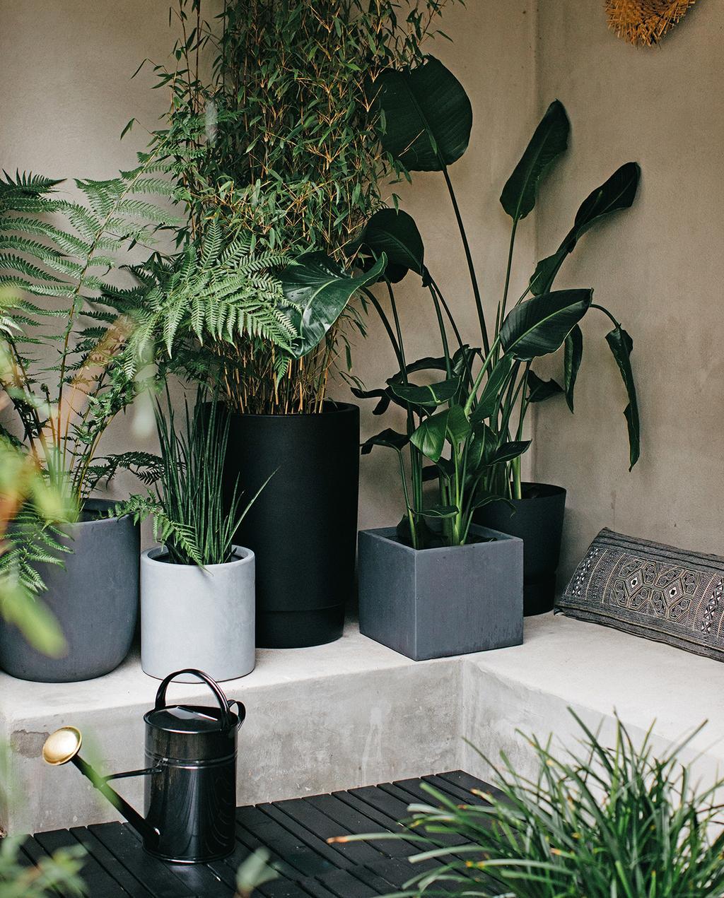 vtwonen tuin special 1 2020 | plantenpotten grijstinten gevuld met planten