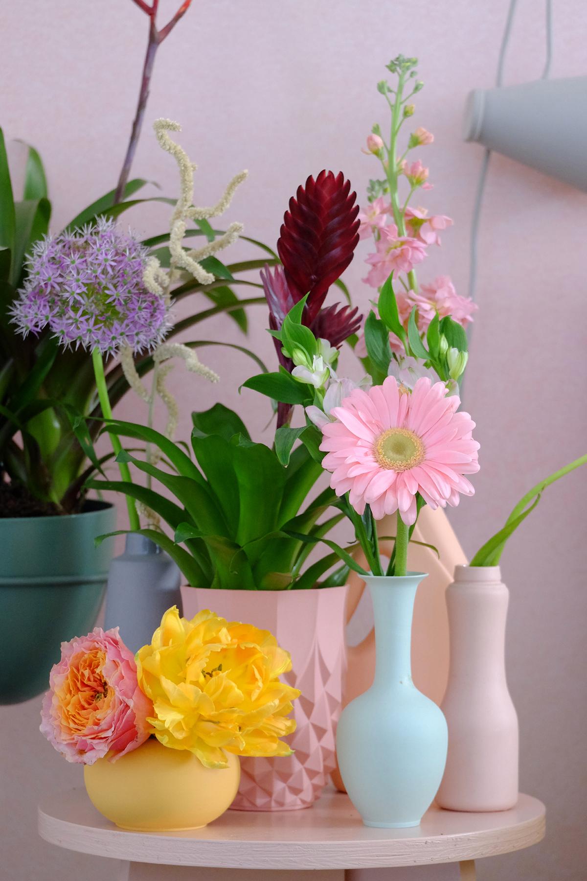 bromelia en snijbloemen gekleurde vazen en potten