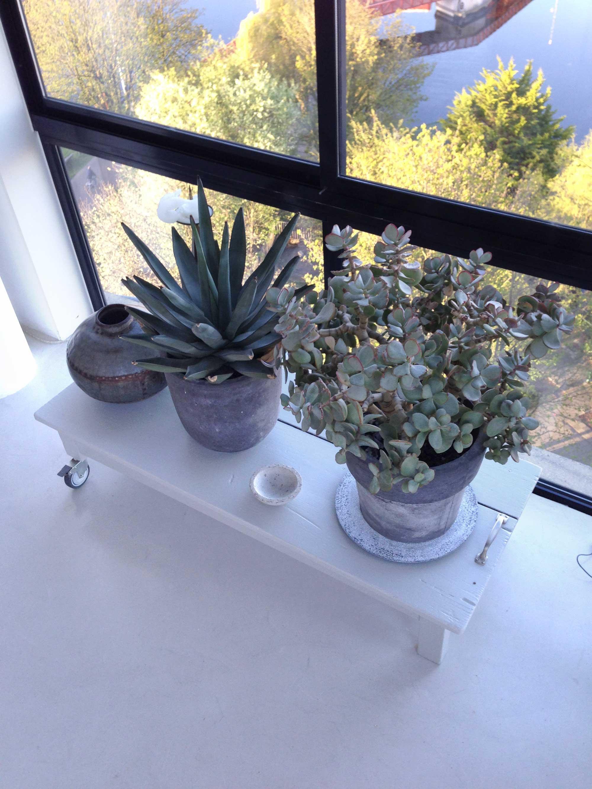 planten-tafel-grijs