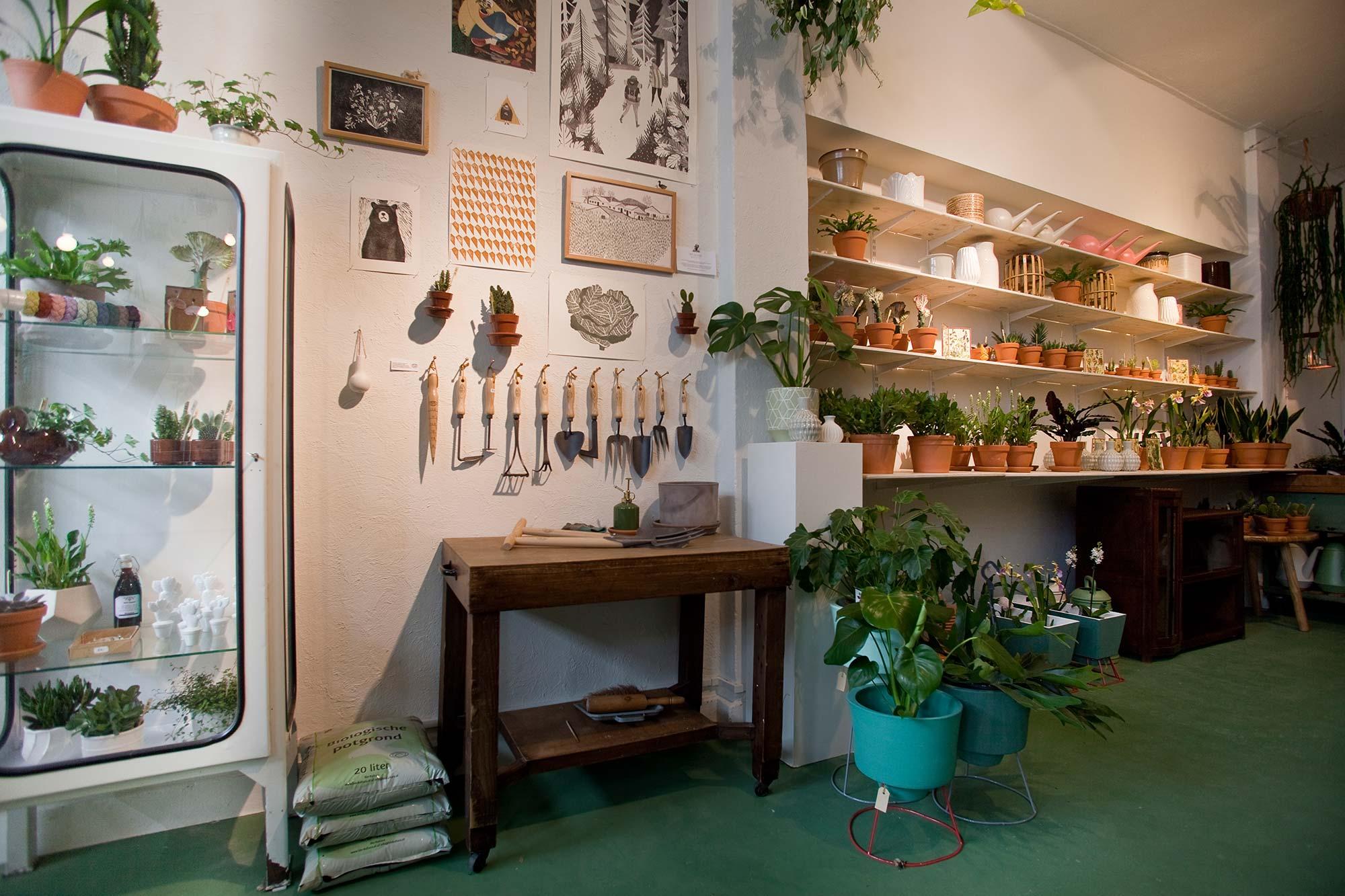 wildernis-amsterdam-stadstuin-kamerplanten-winkel-4