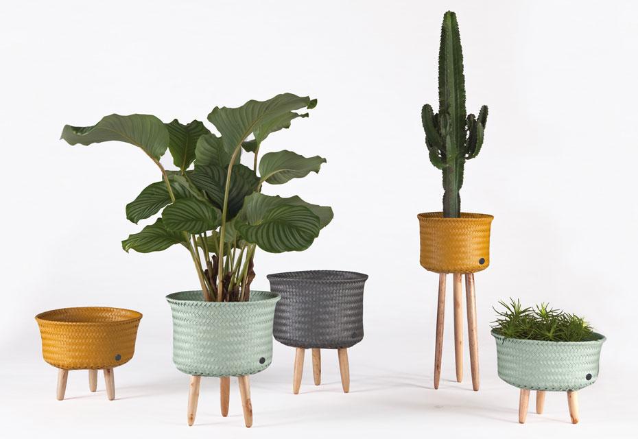 3x anders: de plantenstandaard