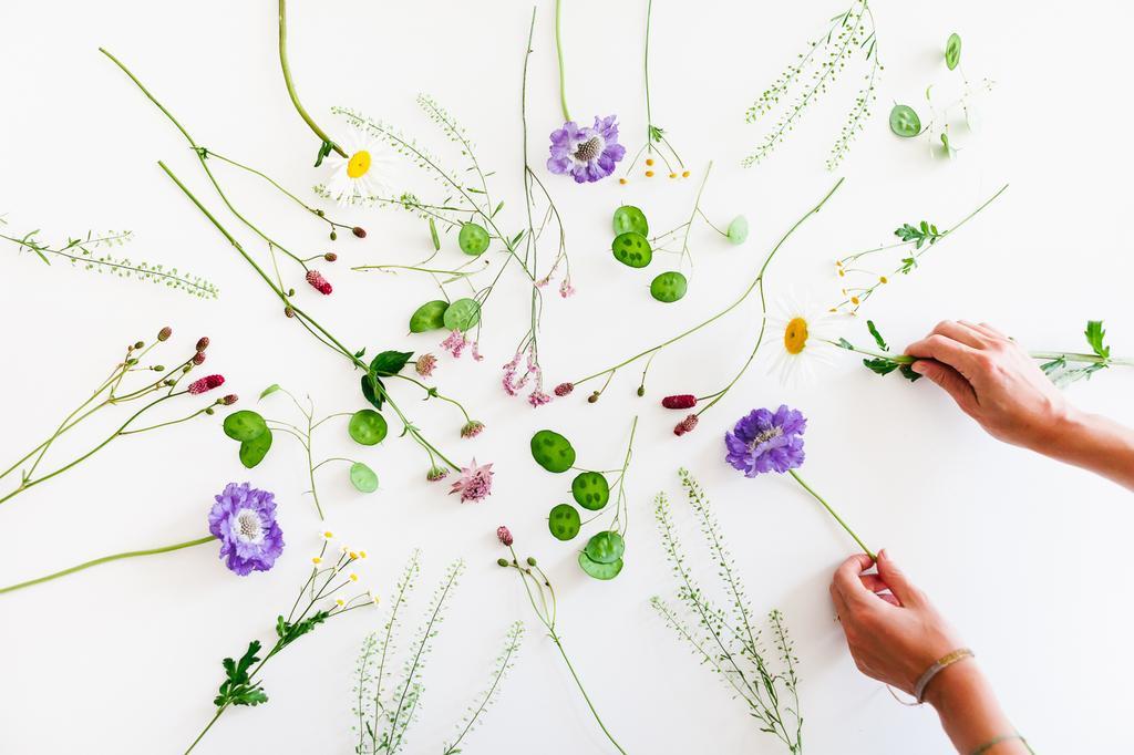 doorthee bloemenpracht bloemen boven