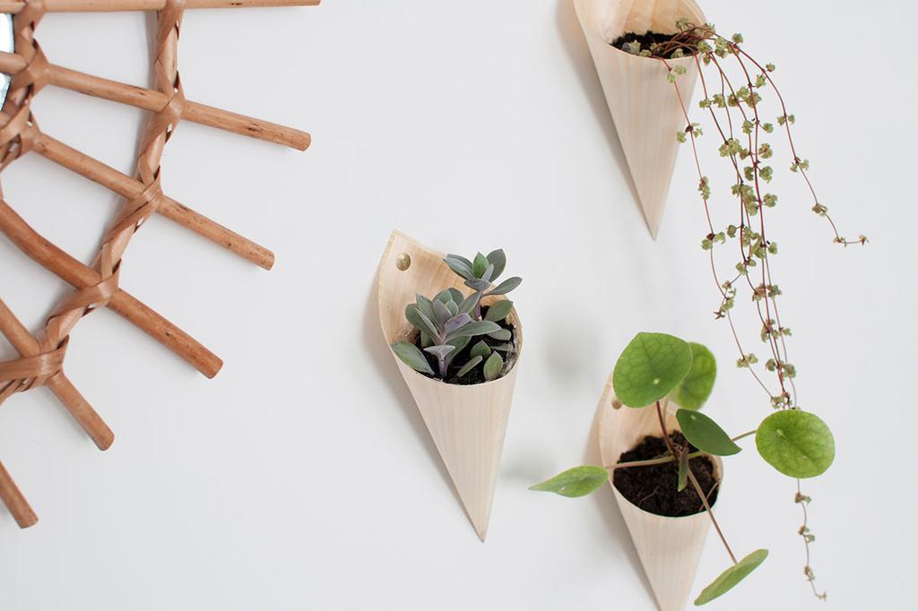 DIY plantenhangers van Zolea in frietzakjes