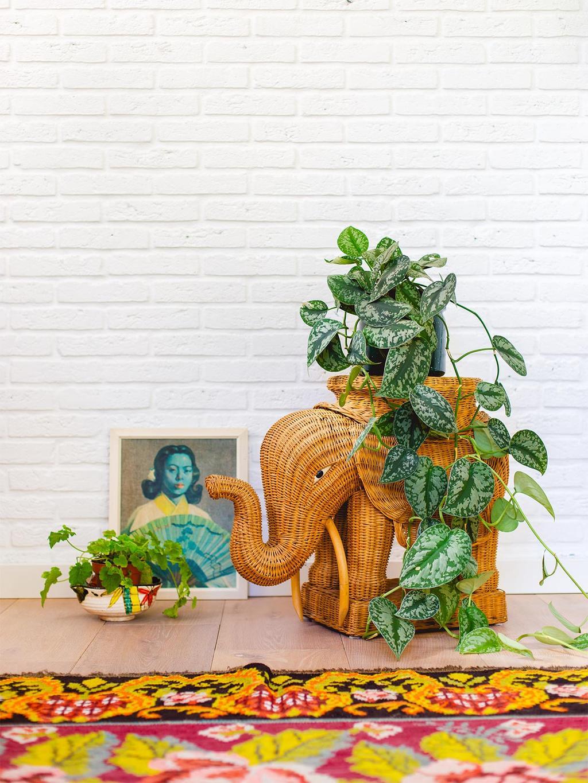 Blogger Oh Marie! styled een rotan olifant met planten en een gekleurd vloerkleed