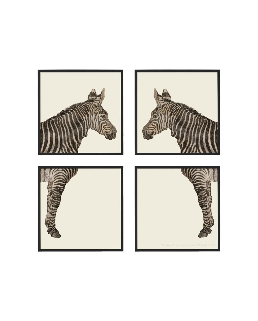 vtwonen juli 2021   set van zebras als kunstwerk met vier schilderijen