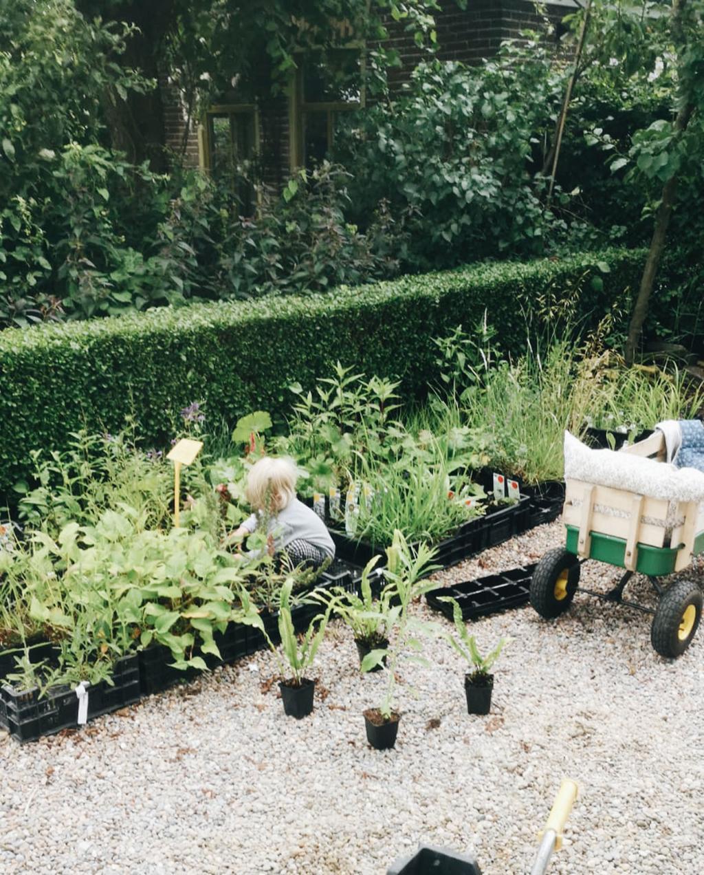 voorstellen nieuwe tuinbloggers vivian en mark | kind speelt in moestuin met karretje