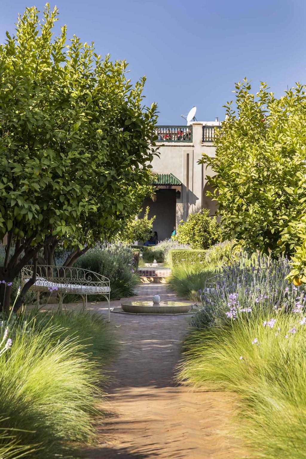 Marrakech vtwonen citytrip tuin