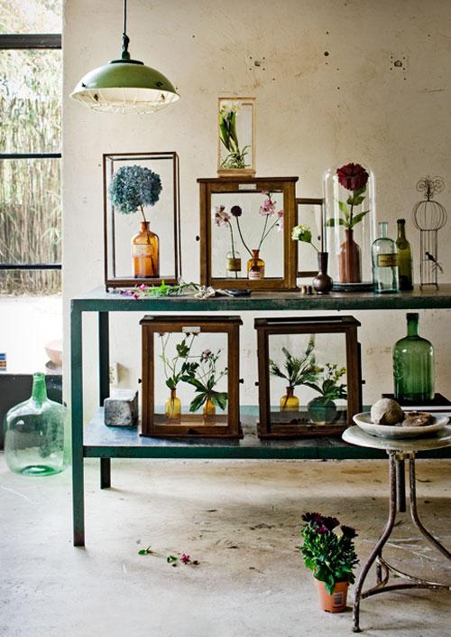 Bloemen achter glas