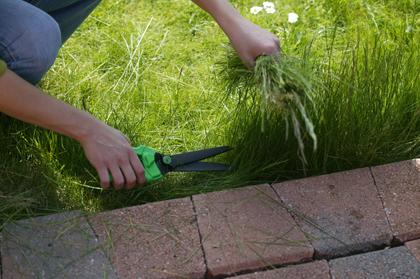 Steken van graskanten