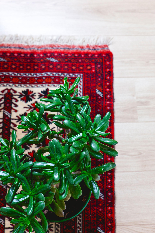 Rood Perzicht tapijt van Oh Marie!