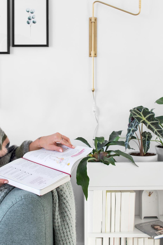 DIY boekenkast met planten naast een blauwe bank