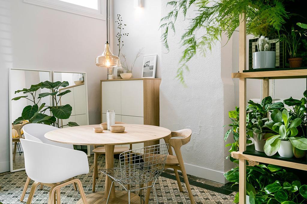 De lichte eetkamer met veel planten van Lukas en Katrien uit de tweede aflevering van Een frisse start met vtwonen.