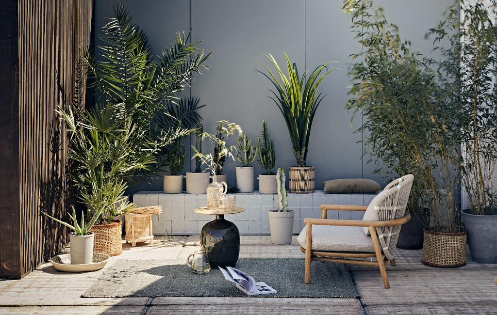 vtwonen collectie pot en plant herfst 2020 betonnen potten en cactussen