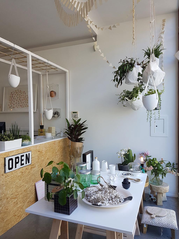 Decoratie, gadgets en planten in Den Atelier van Amandine