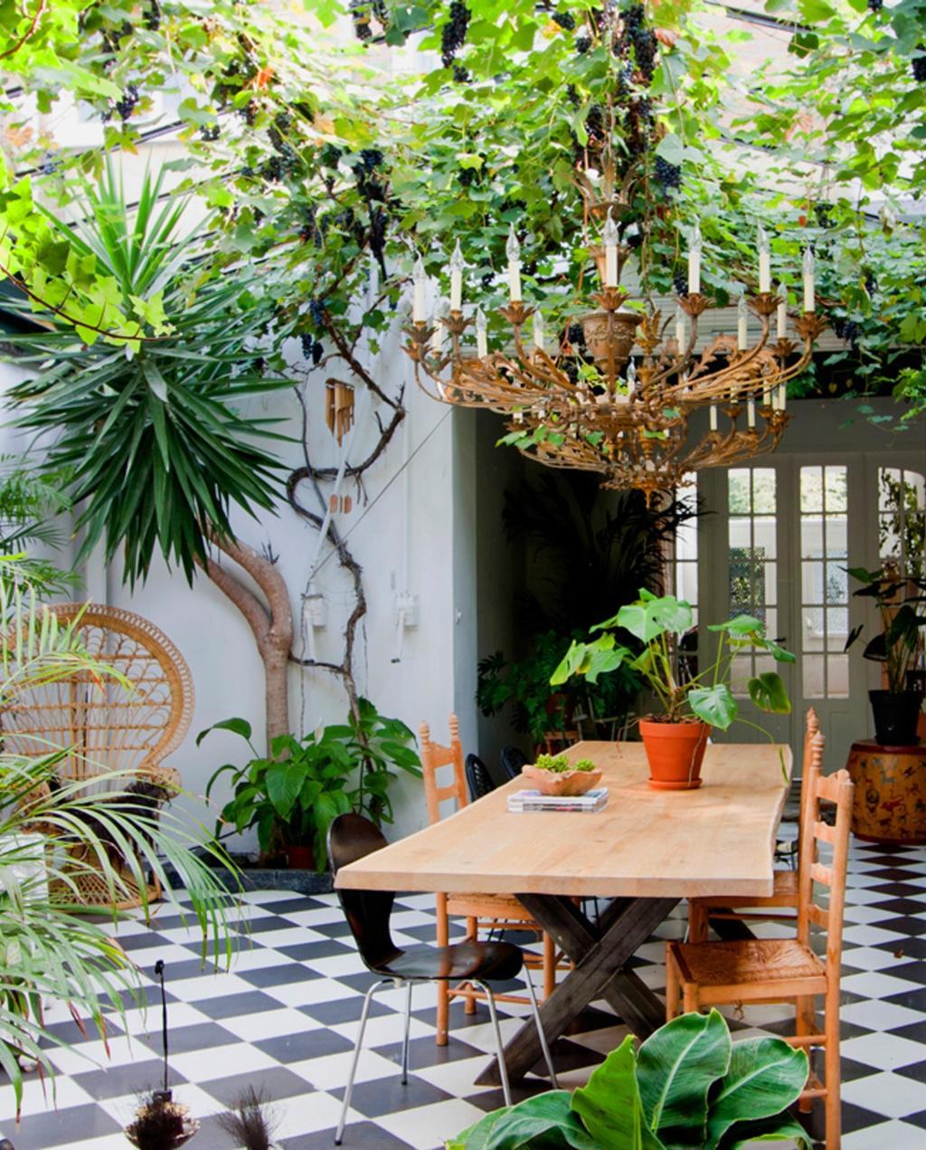Binnenkijken | urban jungle | planten