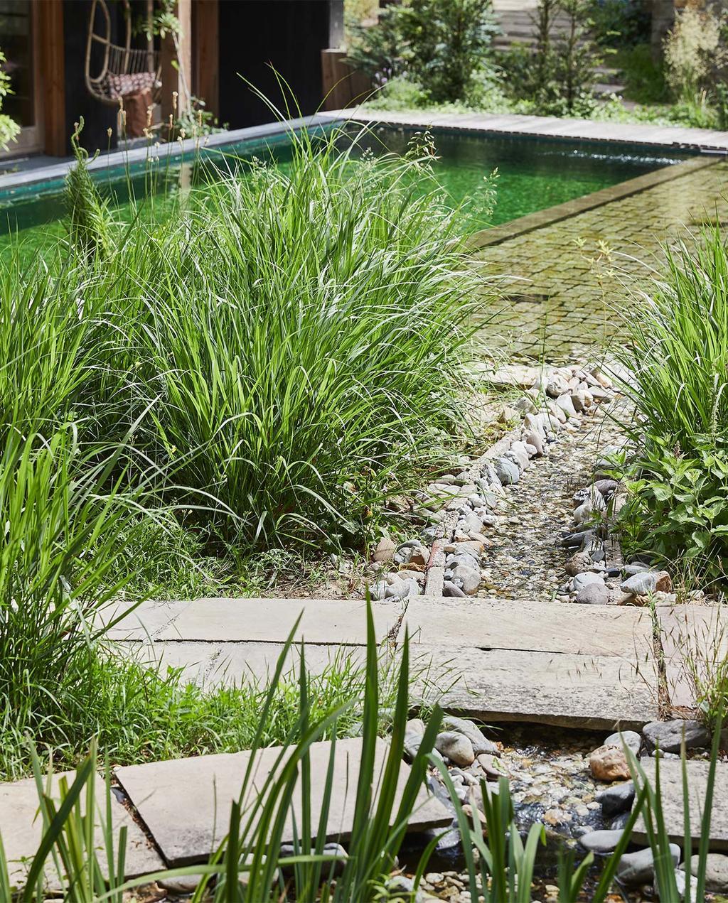 vtwonen special tuin 03 2021 | vierkante zwemvijver