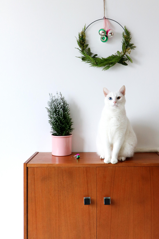 my attic roze pot
