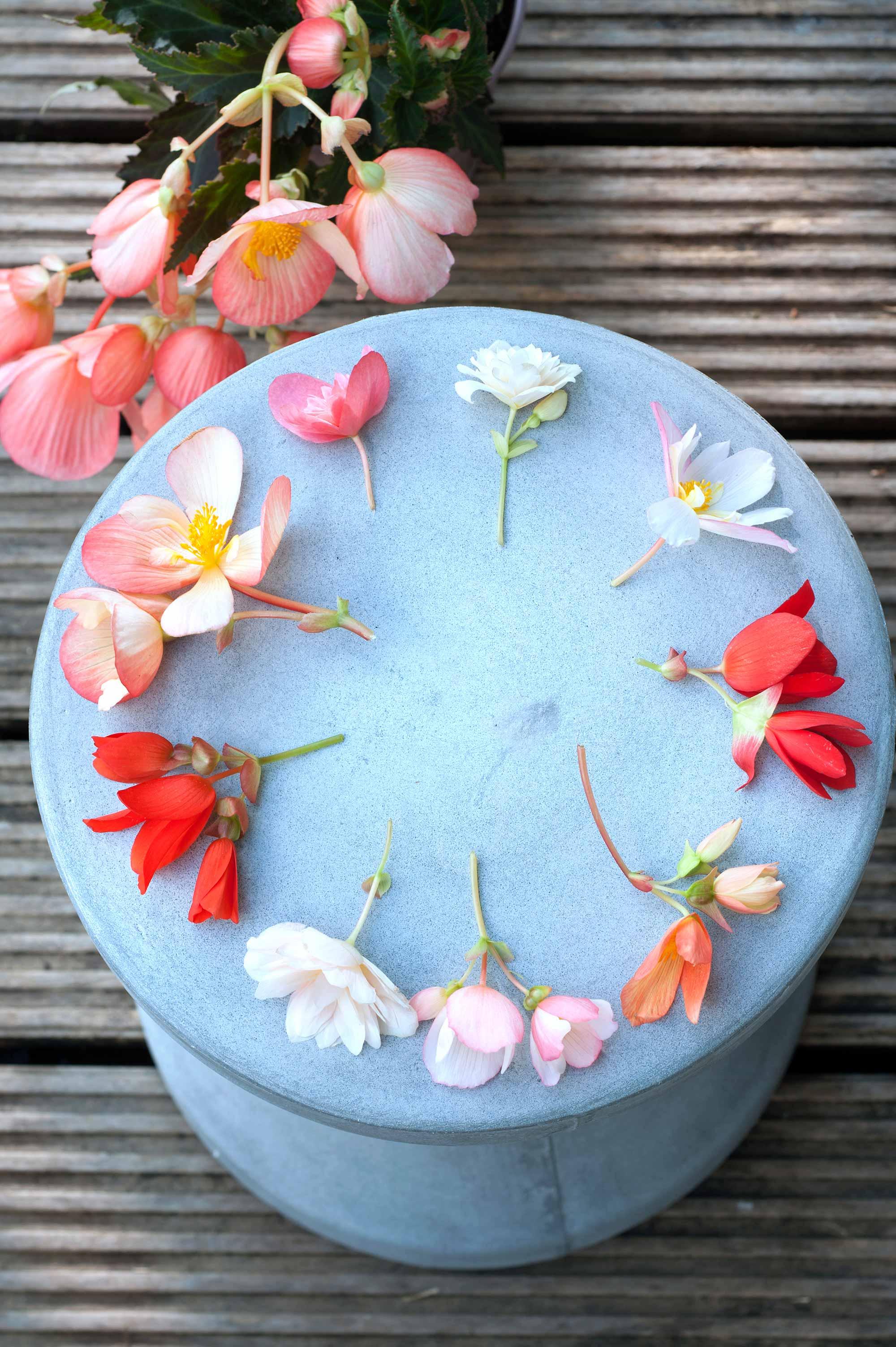 bloemen pastel