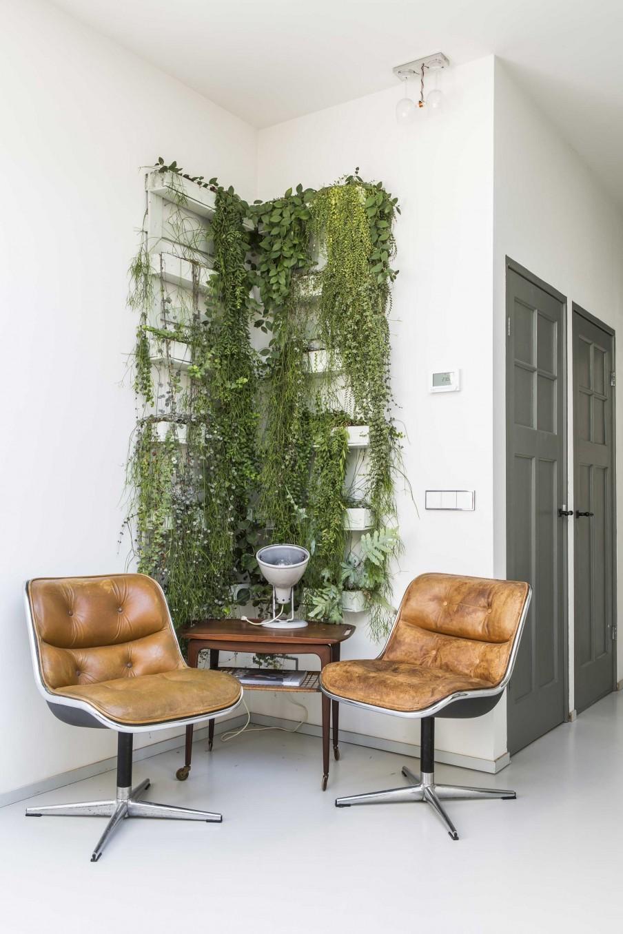 coin plantes vertes fauteuils cuir