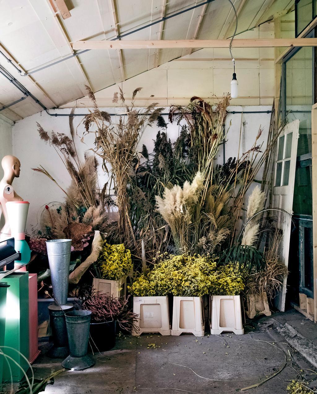 vtwonen 8-2019 | Ambacht Mariette & Denise zelfgekweekte biologische bloemen | voorraad bloemen gedroogd