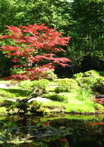 Japanse bezoektuin