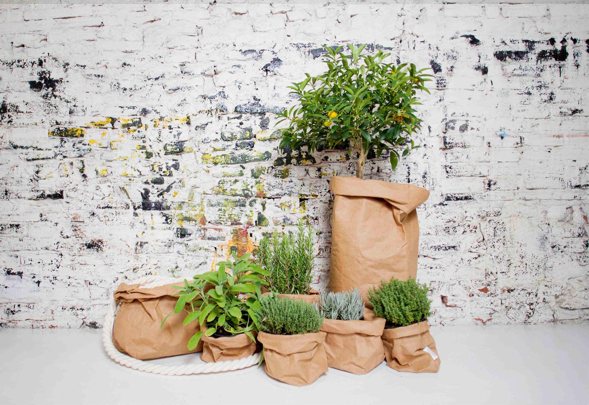 5x decoreren met planten