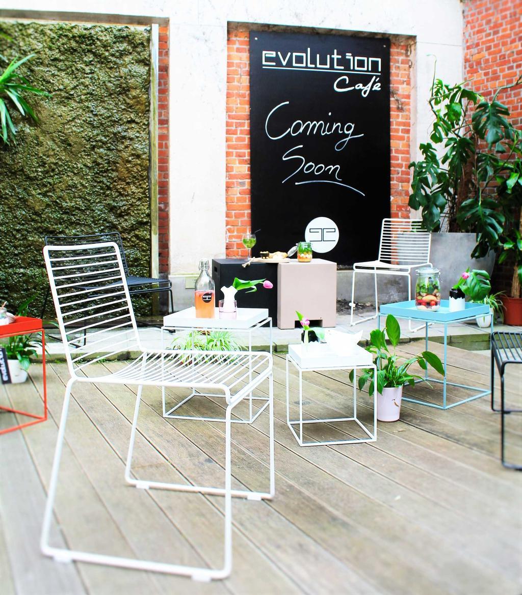 terras evolution cafe