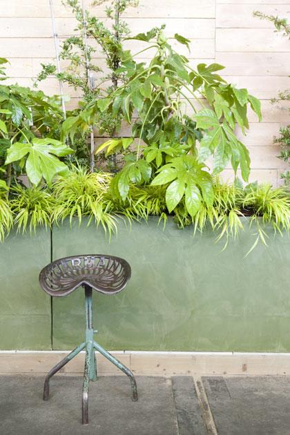 Ligging tuin: tuin noorden