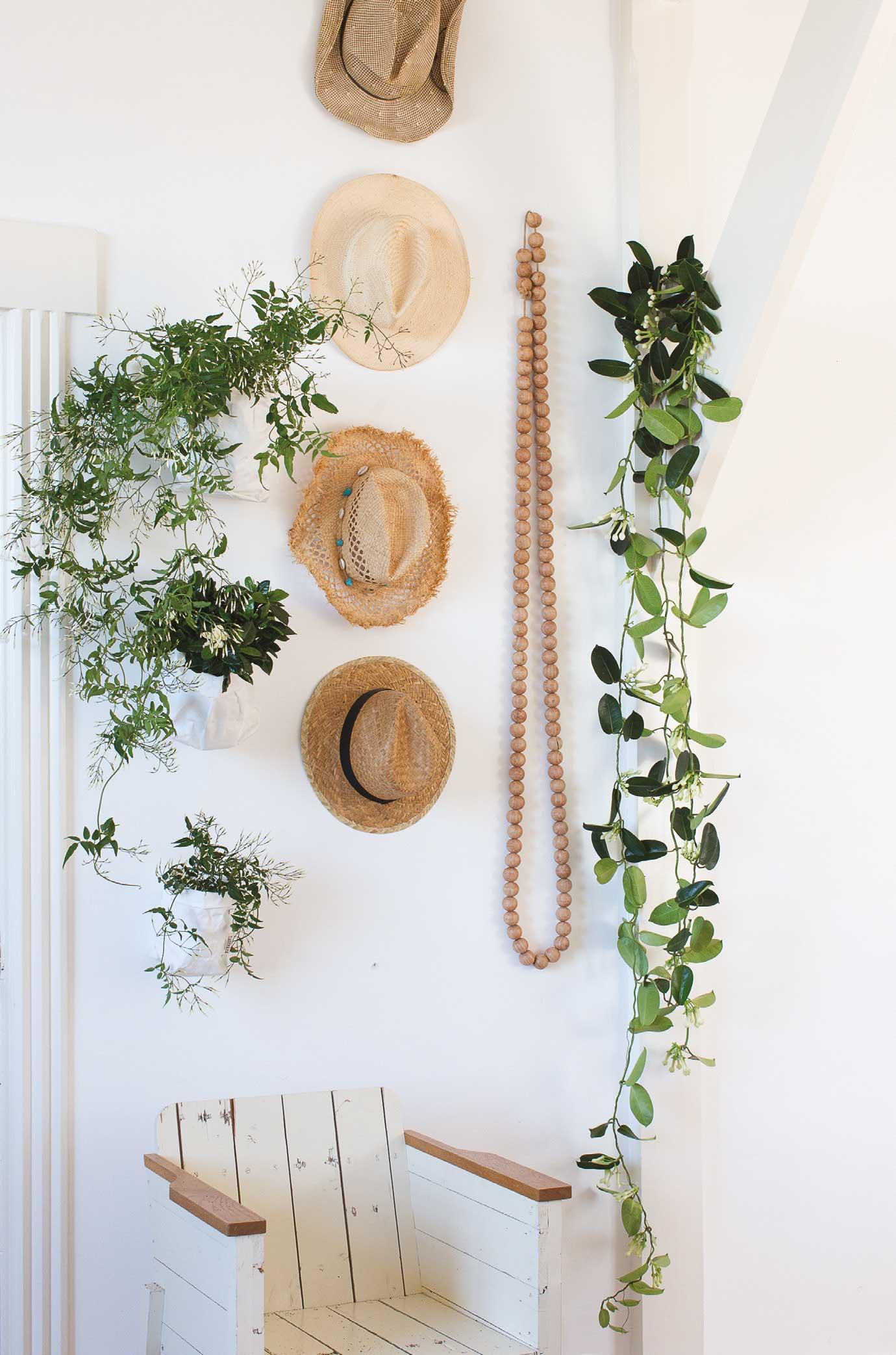 Geurende planten