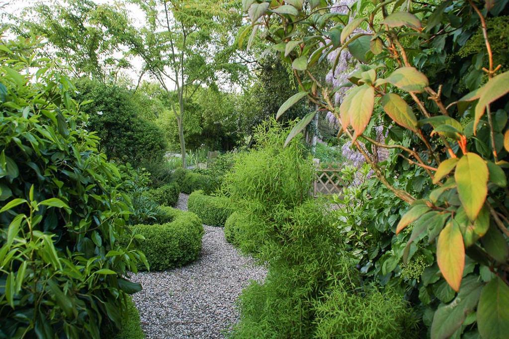 Tuin met organische vormen