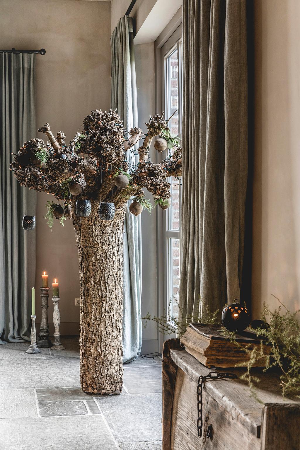 kerstboom alternatief catalpa