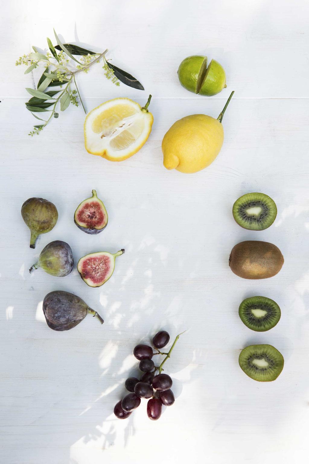 Citrus, Vijg, Olijf en Druif
