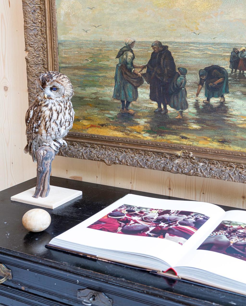 vtwonen 08-2020 | binnenkijken Barchem opgezette uil met boek