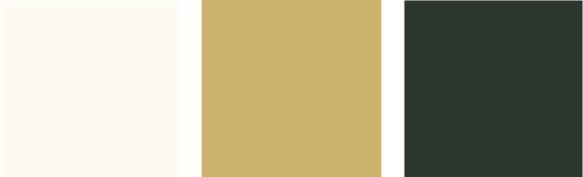 Hollands kleurenpalet