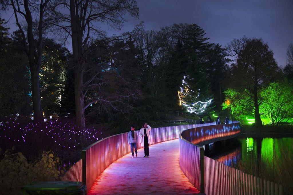 Verlicht pad kerstlichtjesroute