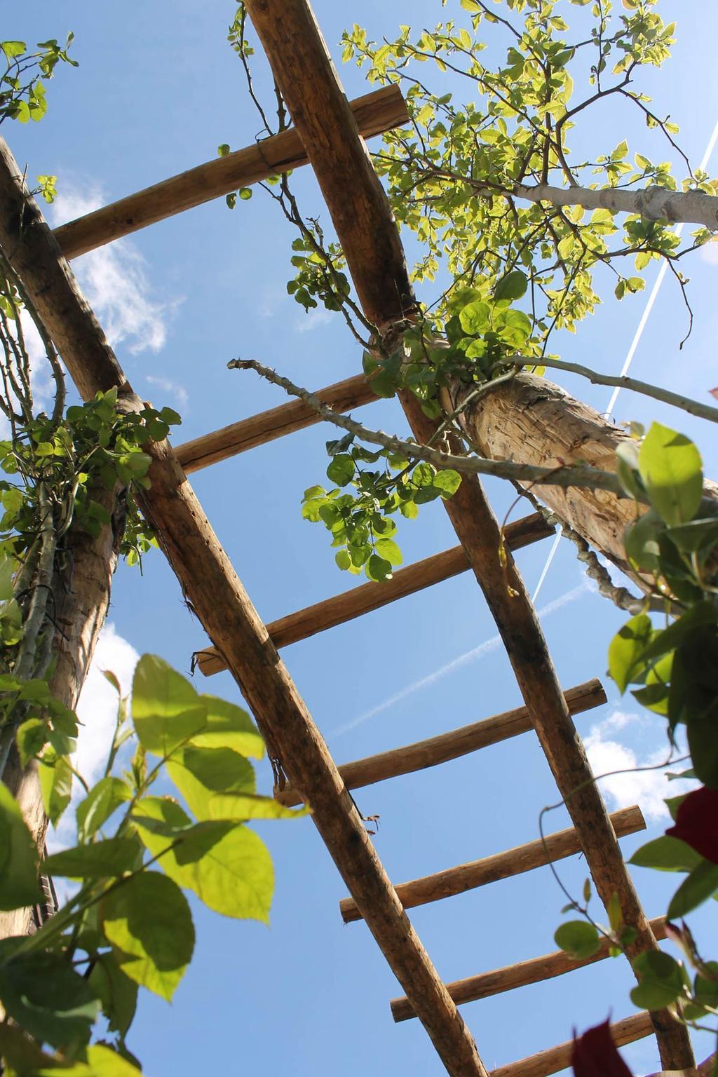 vtwonen - Blog Kristel Mallorca in de achtertuin vtwonen