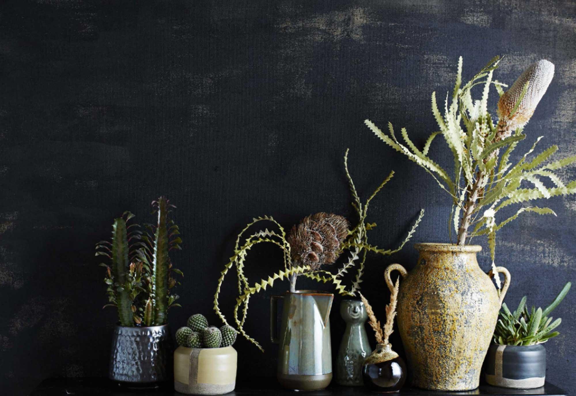 Stenen vazen - Planten - Cactus - Karaf