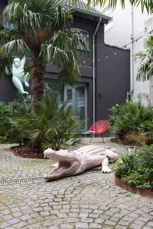 Dutch hotel krokodil hotspot