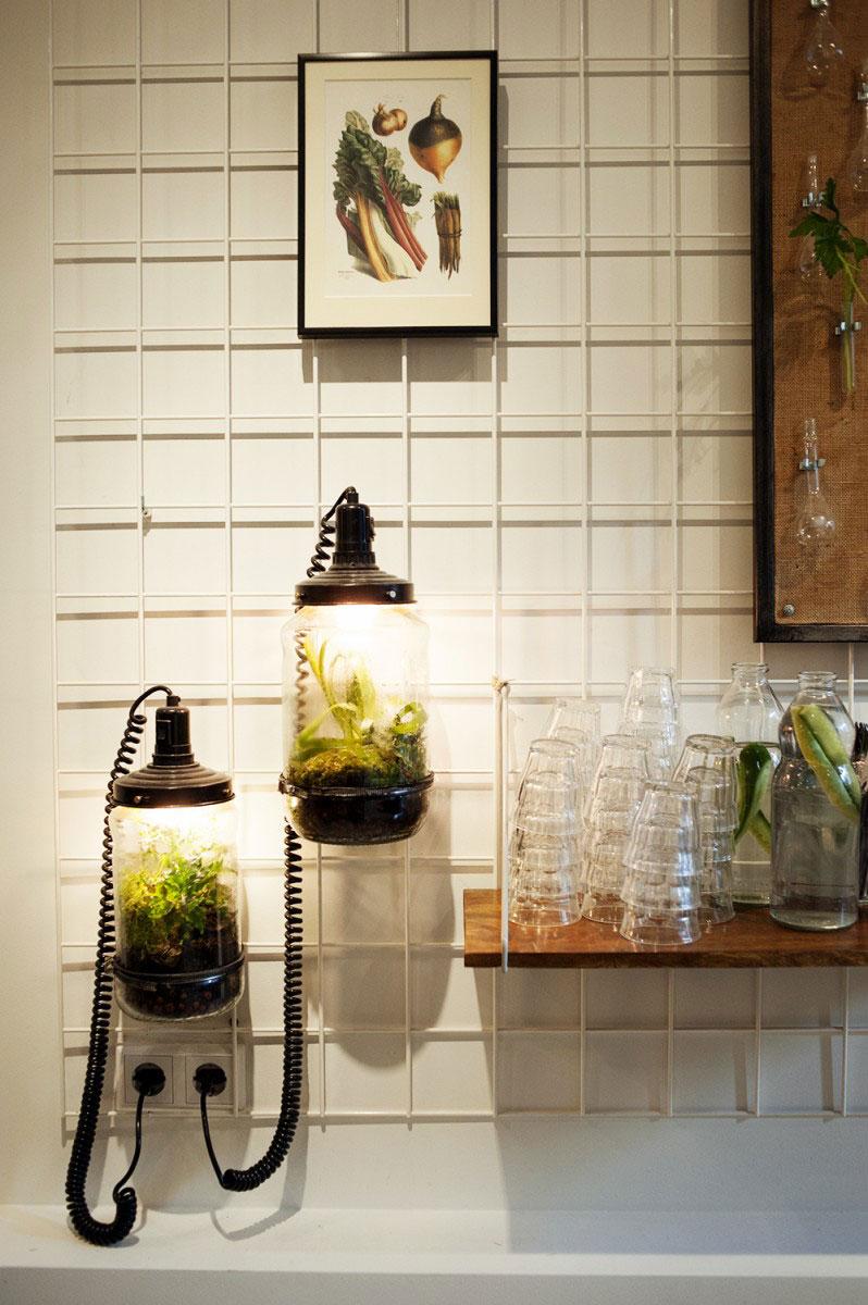 self sustaining plant in glazen pot lamp